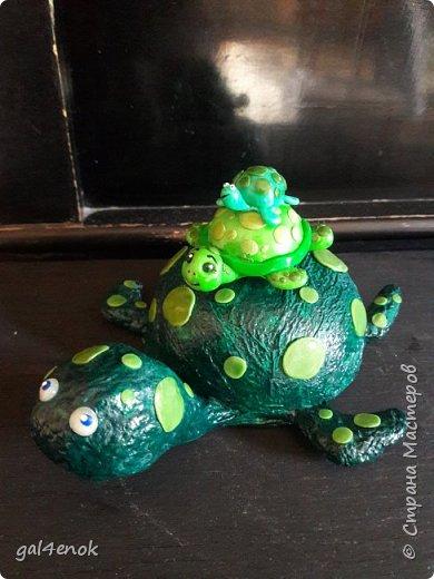 """Учительница сына, попросила сделать работу.. тема выставки в школе """" Малахитовая черепаха"""". Вот результат двух дней работы... фото 1"""