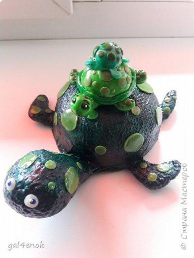 """Учительница сына, попросила сделать работу.. тема выставки в школе """" Малахитовая черепаха"""". Вот результат двух дней работы... фото 3"""