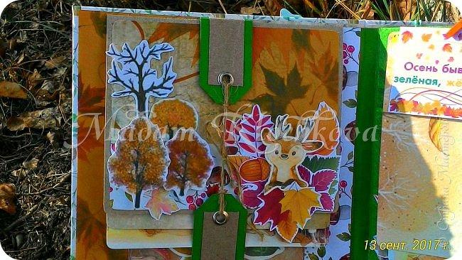 Осень золотая... фото 8