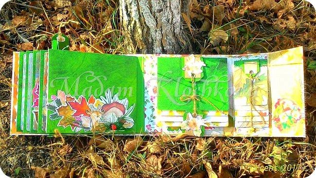 Осень золотая... фото 10