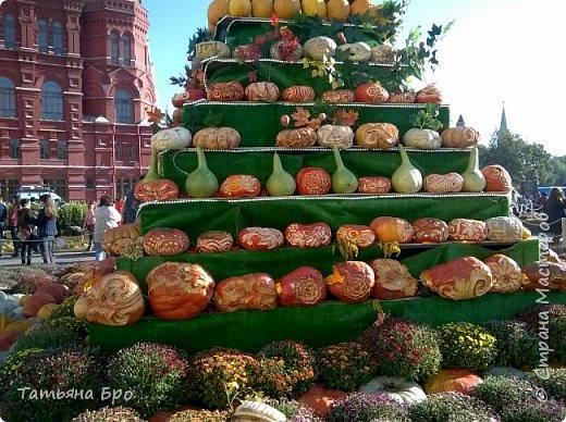Вот такие страусиные яйца! Только одна скорлупа стоит 500 рублей! фото 12