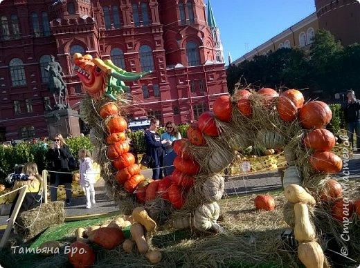 Вот такие страусиные яйца! Только одна скорлупа стоит 500 рублей! фото 23