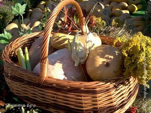 Вот такие страусиные яйца! Только одна скорлупа стоит 500 рублей! фото 25