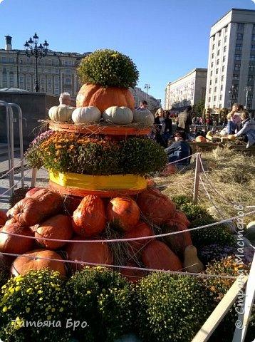 Вот такие страусиные яйца! Только одна скорлупа стоит 500 рублей! фото 20