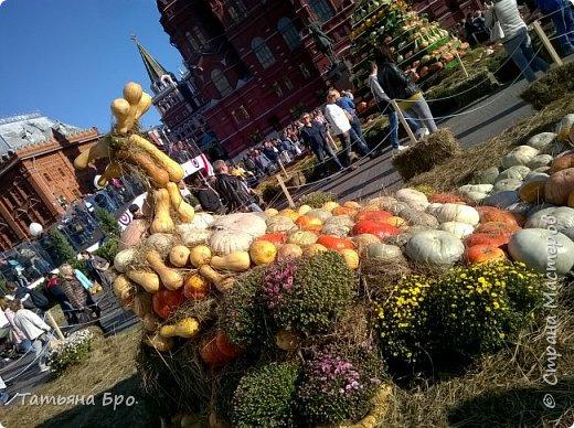 Вот такие страусиные яйца! Только одна скорлупа стоит 500 рублей! фото 19
