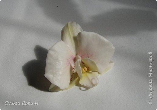 Орхидея зажим. Холодный фарфор. фото 3