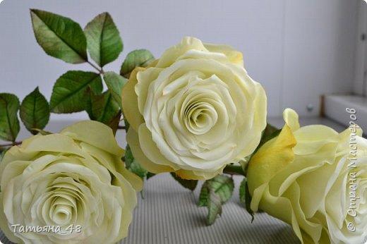 Здравствуйте жители Страны Мастеров! Что то я зачастила  к вам.... Вот результат моей двухнедельной ночной жизни... Розы  создавала по МК Майи Немец (тоже житель Страны) на заказ ... Приготовьтесь.... фотосессия удалась.... фото 2