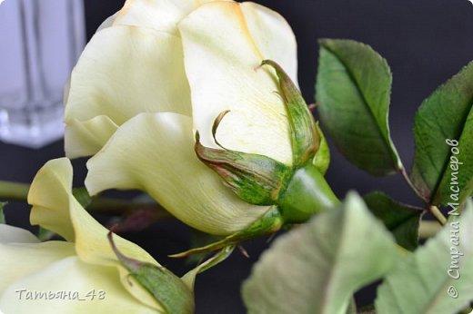 Здравствуйте жители Страны Мастеров! Что то я зачастила  к вам.... Вот результат моей двухнедельной ночной жизни... Розы  создавала по МК Майи Немец (тоже житель Страны) на заказ ... Приготовьтесь.... фотосессия удалась.... фото 17