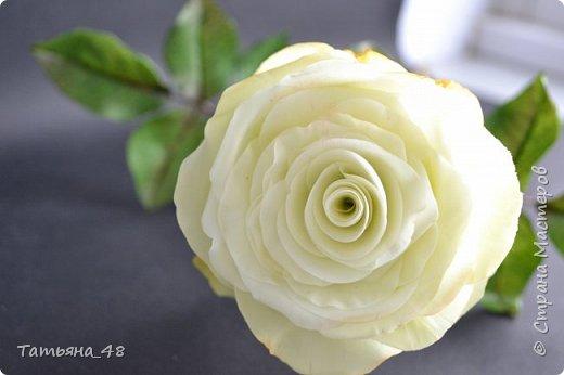 Здравствуйте жители Страны Мастеров! Что то я зачастила  к вам.... Вот результат моей двухнедельной ночной жизни... Розы  создавала по МК Майи Немец (тоже житель Страны) на заказ ... Приготовьтесь.... фотосессия удалась.... фото 1