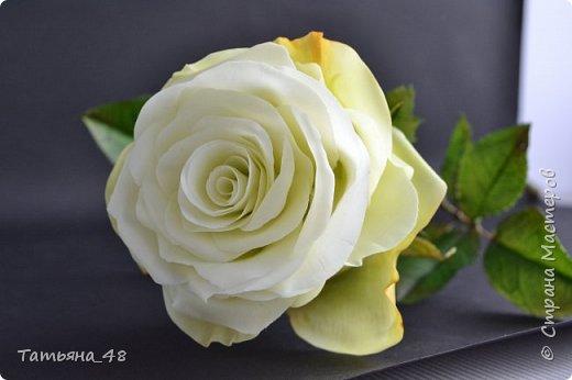 Здравствуйте жители Страны Мастеров! Что то я зачастила  к вам.... Вот результат моей двухнедельной ночной жизни... Розы  создавала по МК Майи Немец (тоже житель Страны) на заказ ... Приготовьтесь.... фотосессия удалась.... фото 9