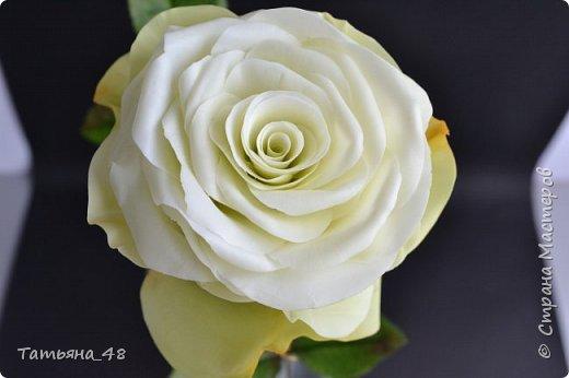 Здравствуйте жители Страны Мастеров! Что то я зачастила  к вам.... Вот результат моей двухнедельной ночной жизни... Розы  создавала по МК Майи Немец (тоже житель Страны) на заказ ... Приготовьтесь.... фотосессия удалась.... фото 19