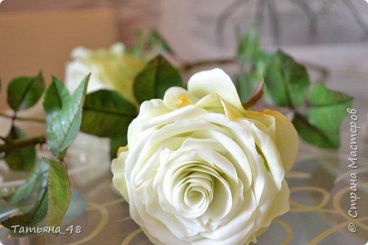 Здравствуйте жители Страны Мастеров! Что то я зачастила  к вам.... Вот результат моей двухнедельной ночной жизни... Розы  создавала по МК Майи Немец (тоже житель Страны) на заказ ... Приготовьтесь.... фотосессия удалась.... фото 18