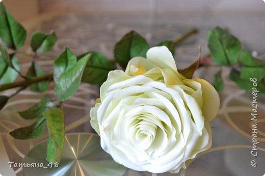 Здравствуйте жители Страны Мастеров! Что то я зачастила  к вам.... Вот результат моей двухнедельной ночной жизни... Розы  создавала по МК Майи Немец (тоже житель Страны) на заказ ... Приготовьтесь.... фотосессия удалась.... фото 12