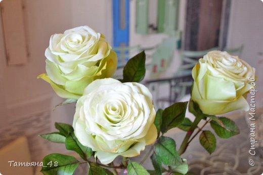 Здравствуйте жители Страны Мастеров! Что то я зачастила  к вам.... Вот результат моей двухнедельной ночной жизни... Розы  создавала по МК Майи Немец (тоже житель Страны) на заказ ... Приготовьтесь.... фотосессия удалась.... фото 13
