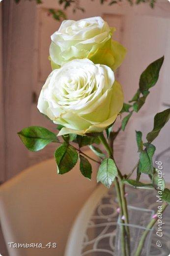 Здравствуйте жители Страны Мастеров! Что то я зачастила  к вам.... Вот результат моей двухнедельной ночной жизни... Розы  создавала по МК Майи Немец (тоже житель Страны) на заказ ... Приготовьтесь.... фотосессия удалась.... фото 14