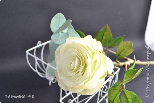 Здравствуйте жители Страны Мастеров! Что то я зачастила  к вам.... Вот результат моей двухнедельной ночной жизни... Розы  создавала по МК Майи Немец (тоже житель Страны) на заказ ... Приготовьтесь.... фотосессия удалась.... фото 15