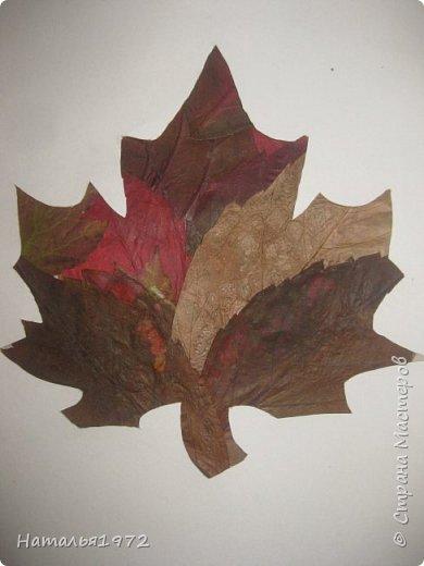 Кленовый лист фото 3