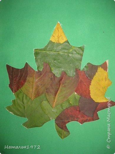 Кленовый лист фото 4
