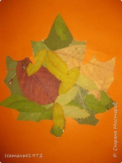 Кленовый лист фото 5