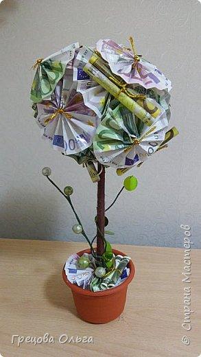 Топиарий Денежное дерево фото 1