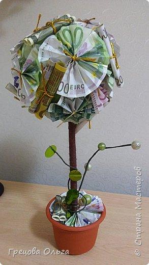 Топиарий Денежное дерево фото 2