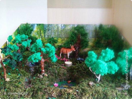 Макет леса и его жителей для детского сада фото 1