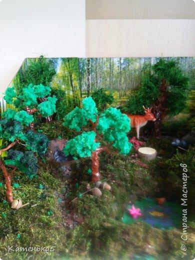 Макет леса и его жителей для детского сада фото 2