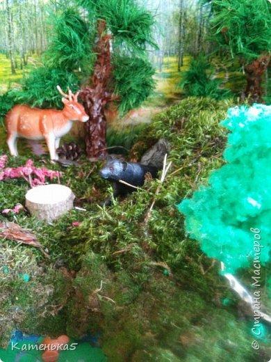 Макет леса и его жителей для детского сада фото 3