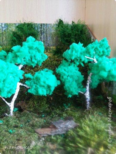 Макет леса и его жителей для детского сада фото 4