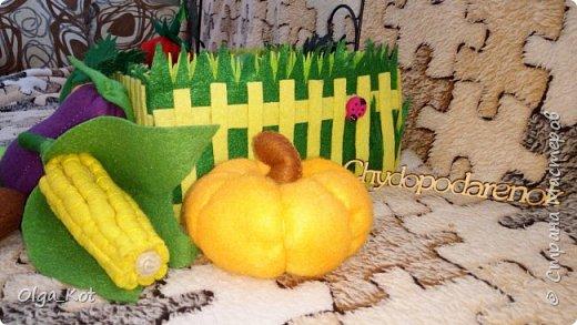 Для своей дочурки я сшила вот такой мини-огородик.  Там есть тыква, баклажан, помидор, огурец, капуста, кукуруза, свекла, картошка, морковка. фото 2