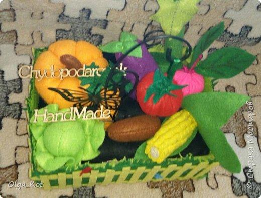 Для своей дочурки я сшила вот такой мини-огородик.  Там есть тыква, баклажан, помидор, огурец, капуста, кукуруза, свекла, картошка, морковка. фото 6