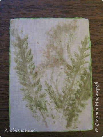 """Всем большущий привет! Представляю вам очередную серию АТС карточек """"Зелёные силуэты"""".  Техника оттиск (отпечаток) растений на ткани. Идею я  увидела в интеренете  Можете выбирать понравившуюся карточку, но хочу предупредить, тем кому я должна АТС карточки будет отдаваться приоритет.  фото 3"""