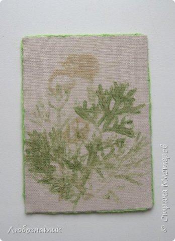 """Всем большущий привет! Представляю вам очередную серию АТС карточек """"Зелёные силуэты"""".  Техника оттиск (отпечаток) растений на ткани. Идею я  увидела в интеренете  Можете выбирать понравившуюся карточку, но хочу предупредить, тем кому я должна АТС карточки будет отдаваться приоритет.  фото 6"""