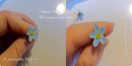 Всем привет! Хочу поделится своим мастер-классом по лепке незабудок, именно это фото живых цветов меня и вдохновило, старалась лепить цветочки так же с оттенками сиреневого и розового как на фото.  фото 8