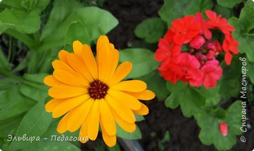 Первым цветом в моей палитре будет, конечно же, жёлтый! Лето - это Солнце и разноцветье трав, цветов  и неба!!! фото 23