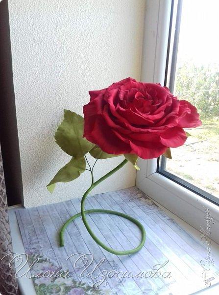 настольная роза из фоамирана,высота 29 см,диаметр 18 см фото 1