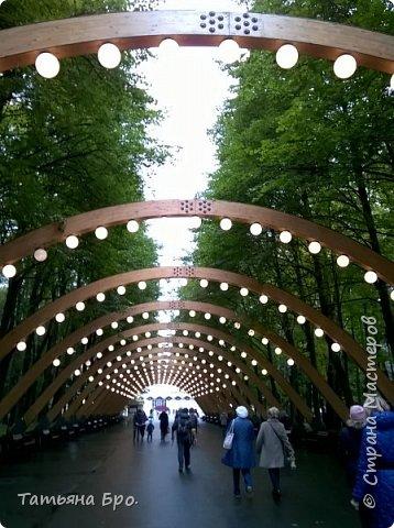 Дорога до выставки. фото 1