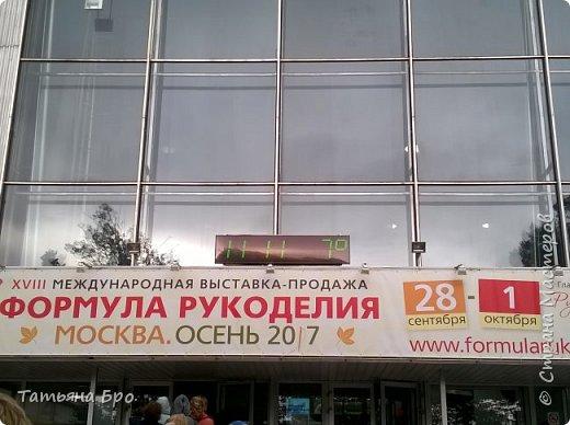 Дорога до выставки. фото 2