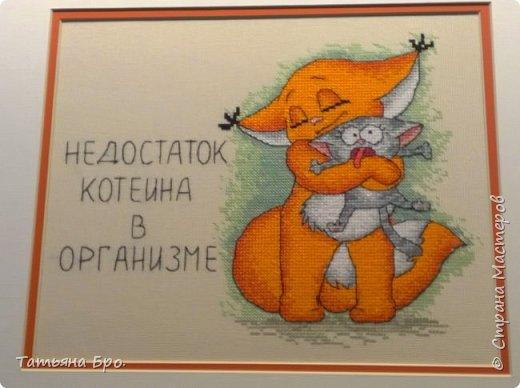 Дорога до выставки. фото 24