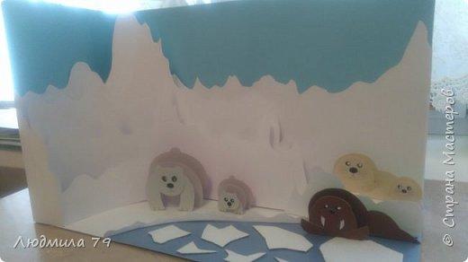 Животные антарктики фото 1