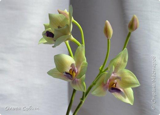 Орхидея. Холодный фарфор фото 1