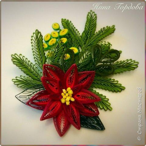 Рождественская звезда-пуансетия! Молочай прекраснейший)))) Само название уже вызывает улыбку и хорошее настроение, правда?)) Многие считают, что пуансетия цветёт один раз, в канун рождества, покупают этот цветок для новогоднего декора, как и елочку, а после праздника не сохраняют. На самом деле растение просто любит больше внимания и заботы))) А вы знали, что цветок пуансетии - это мелкие соцветия, серединка? А эти яркие лепестки - прицветия, листья? Для меня это стало неожиданностью)) И темой для творческого эксперимента! Попробую разные варианты кручения и цветовую гамму . Фото будут по мере готовности. А сейчас первая звездочка)))) фото 9