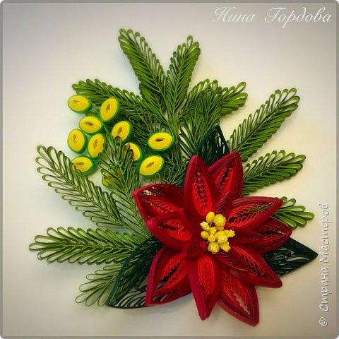 Рождественская звезда-пуансетия! Молочай прекраснейший)))) Само название уже вызывает улыбку и хорошее настроение, правда?)) Многие считают, что пуансетия цветёт один раз, в канун рождества, покупают этот цветок для новогоднего декора, как и елочку, а после праздника не сохраняют. На самом деле растение просто любит больше внимания и заботы))) А вы знали, что цветок пуансетии - это мелкие соцветия, серединка? А эти яркие лепестки - прицветия, листья? Для меня это стало неожиданностью)) И темой для творческого эксперимента! Попробую разные варианты кручения и цветовую гамму . Фото будут по мере готовности. А сейчас первая звездочка)))) фото 8