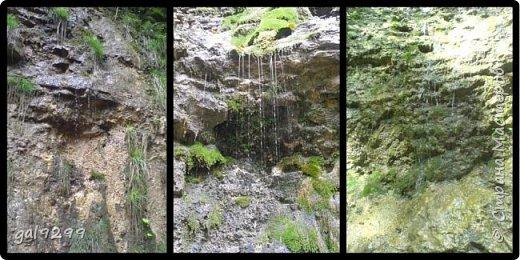 Гуамское ущелье. Краснодарский край. фото 15