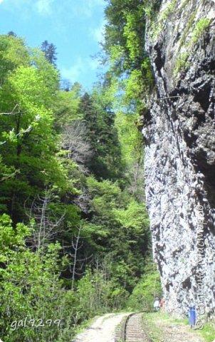 Гуамское ущелье. Краснодарский край. фото 4