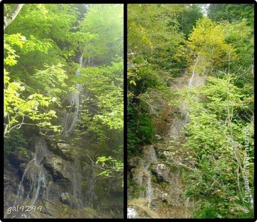 Гуамское ущелье. Краснодарский край. фото 6