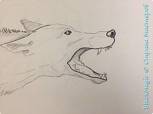 Волкособ. Помесь собаки и волка. Вот что будет если прочитав новости врубить Металлику и сесть рисовать. фото 3