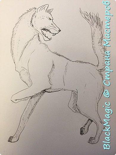 Волкособ. Помесь собаки и волка. Вот что будет если прочитав новости врубить Металлику и сесть рисовать. фото 1