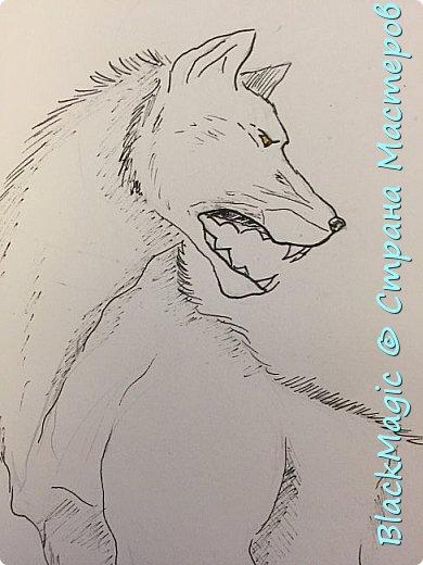 Волкособ. Помесь собаки и волка. Вот что будет если прочитав новости врубить Металлику и сесть рисовать. фото 2