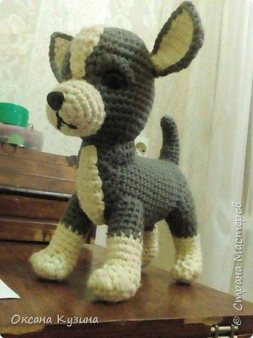 Собачки связаны по МК Натальи И. фото 6
